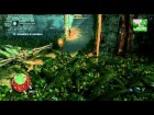 Assassin's Creed IV Black Flag - Walkthrough - Secuencia 2 - Recuerdo 5 - Sync 100%
