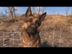 V�deo: Fallout 4/ Top 5 cosas que no te habras percatado en sus videos parte 2
