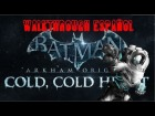 Cold, Cold Heart Walkthrough Espa�ol (Parte 1)-Batman: Arkham Origins
