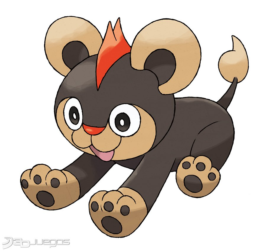 Imagen Pokémon X / Pokémon Y 3DS - 3DJuegos