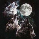 Lobos de la luna
